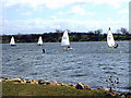 TL1498 : Sailing at Ferry Meadows, Peterborough by Terry McKenna