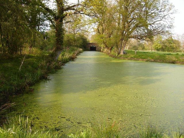 Long Meadow Winding Hole