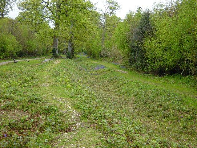 Slindon Estate Park Pale