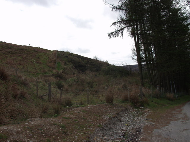 Forestry clear fell at Worlds End