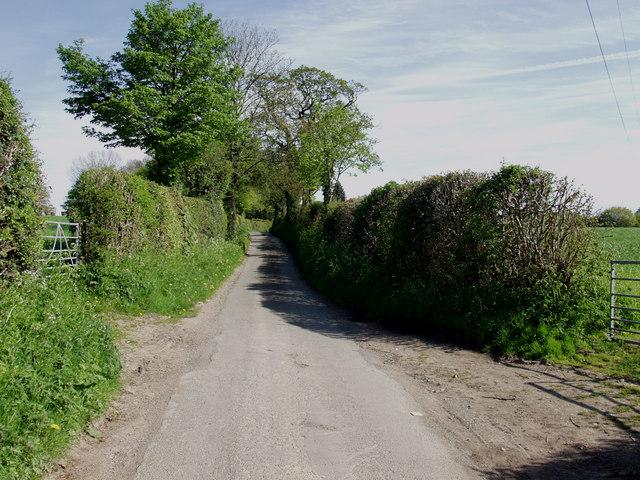 Lane at Nefod near St. Martins Moor