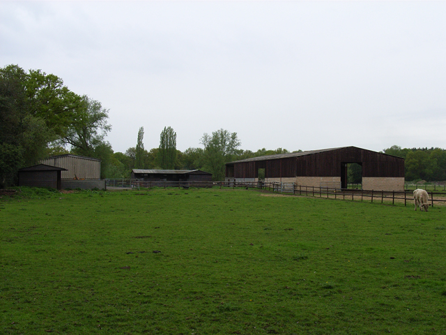 Bullock and barns, near Coxhill Green