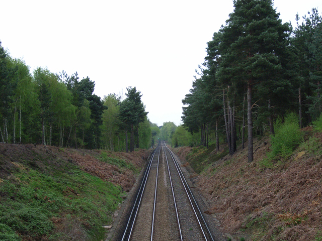 Railway, north of Bagshot