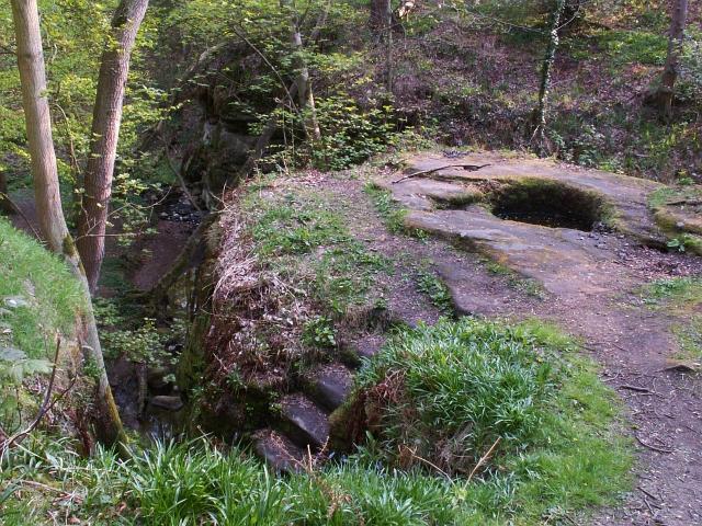 Dunino Den and steps