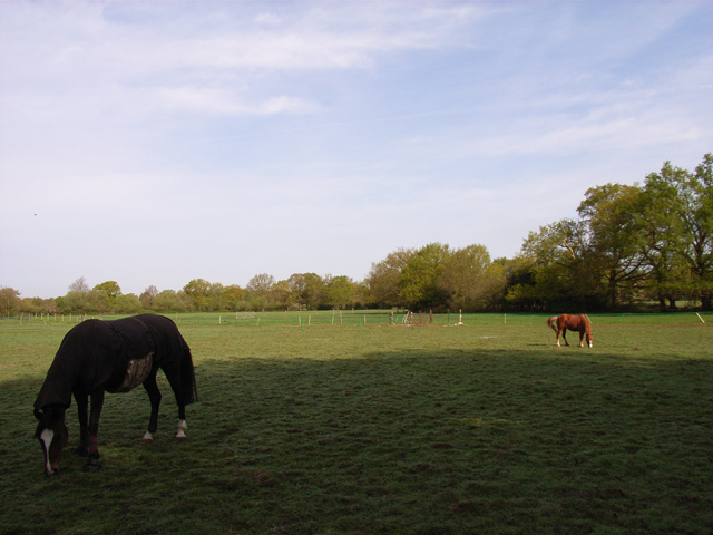Manor Farm, Chobham