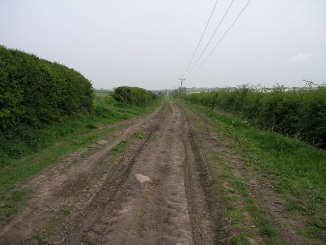 Rutted Track