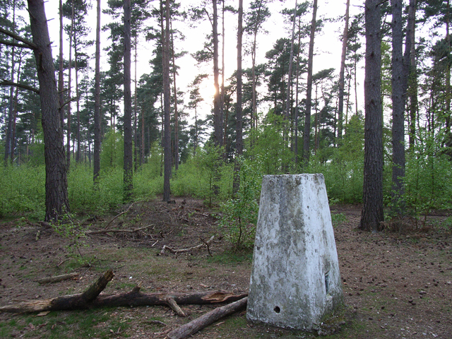 Triangulation pillar, Beacon Hill