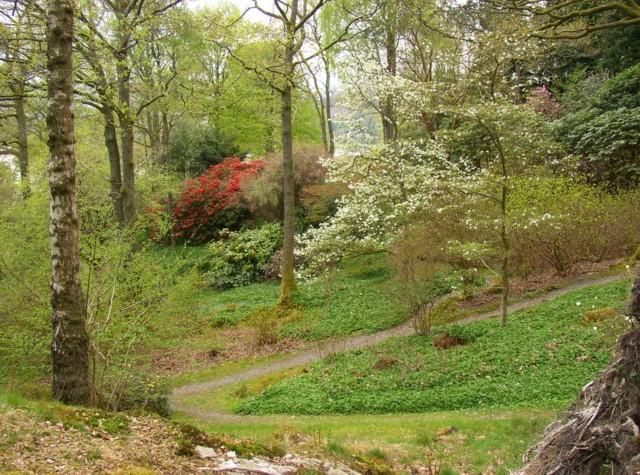 Stagshaw Garden, Ambleside