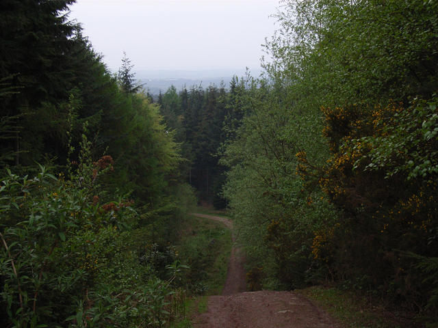 Track, Beacon Hill