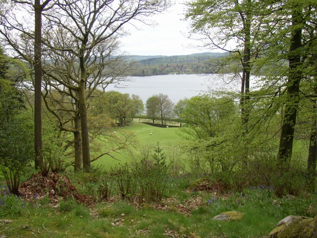 View from Stagshaw Garden over pasture to Windermere, Ambleside