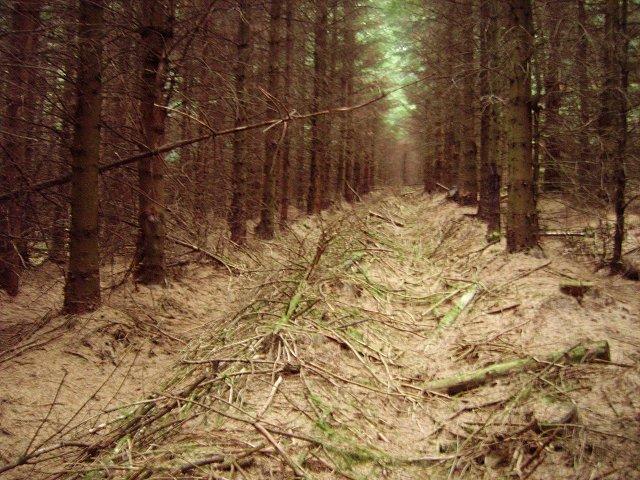 The darkness, Crailzie Hill