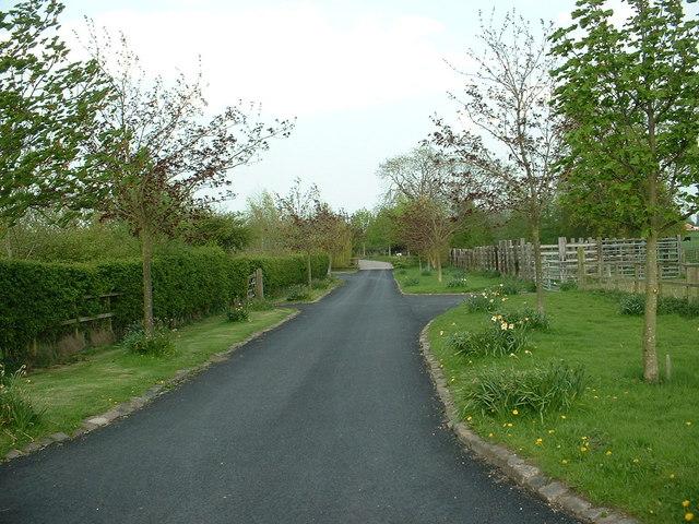 Driveway near Bunbury Heath