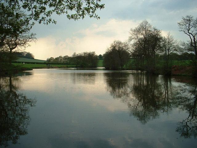 Fishing Lake at Limetree Farm