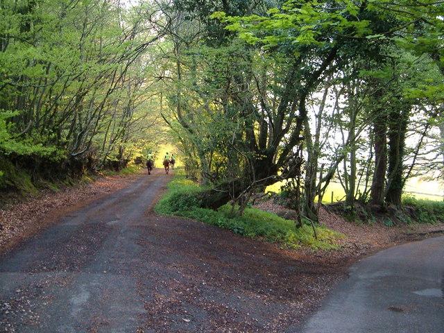 Junction near Waddon Brakes