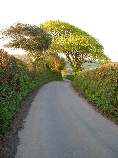Lane to Harbourneford Cross