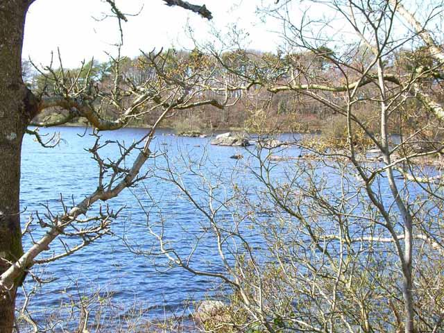 Mochrum Loch (north end)