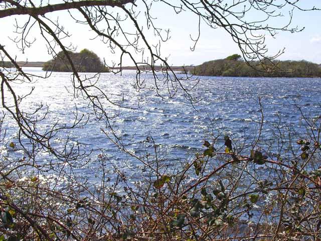 Long Island and Round Island, Mochrum Loch
