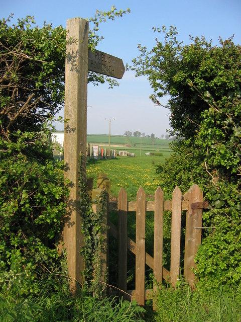 Thorpe Bassett - Path