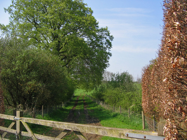 Settrington Grange - Track