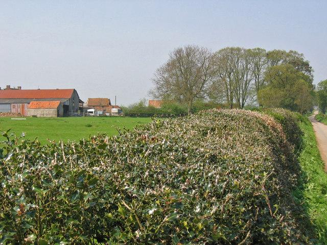 Garthorth Hall Farm