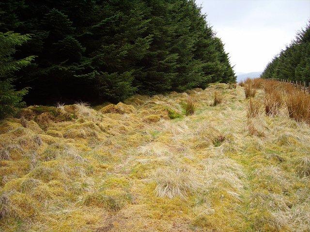 Crailzie Hill
