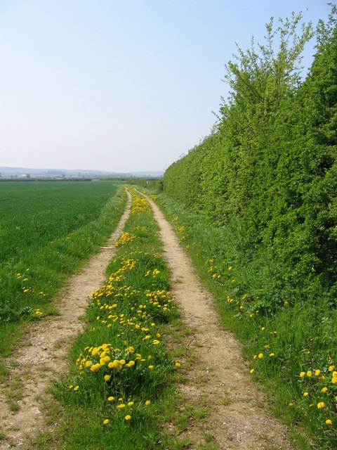 Path to Barton-Le-Street