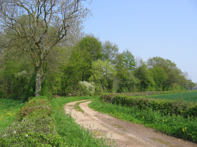 Track SE of Great Barugh