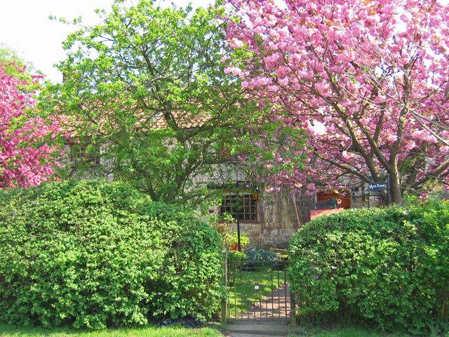Great Habton - Cottage