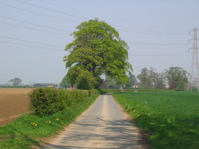 Lane to Espersykes Farm
