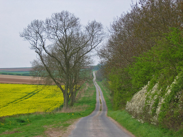 Lane to Broach Dale