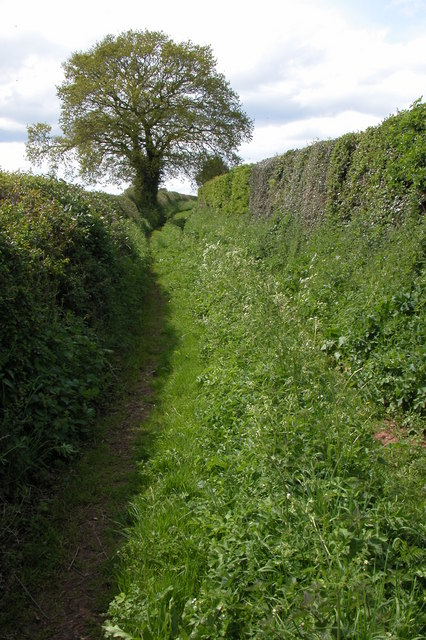 Green Lane to the west of Wobage Farm