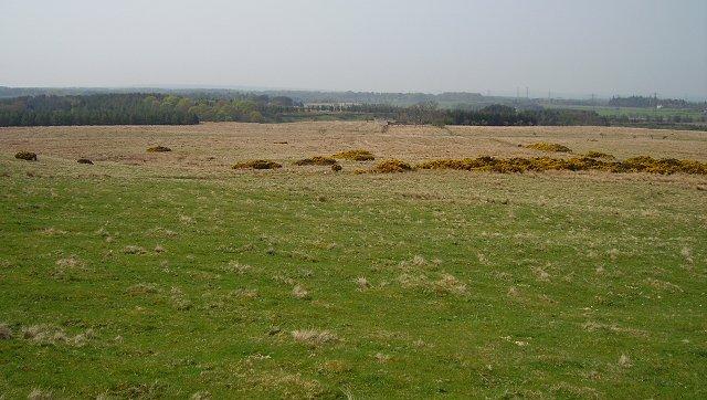 Lost farmland
