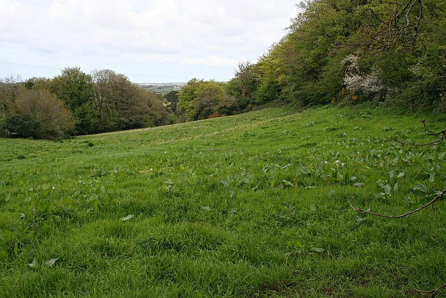 Valley Floor at Cot Hill