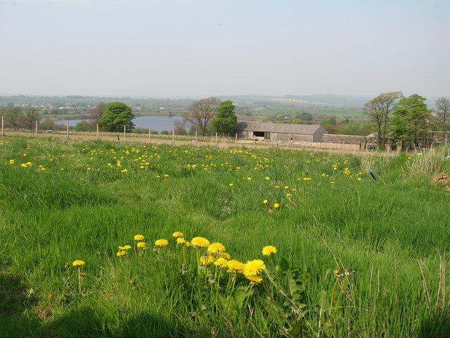 Royd Moor Reservoir