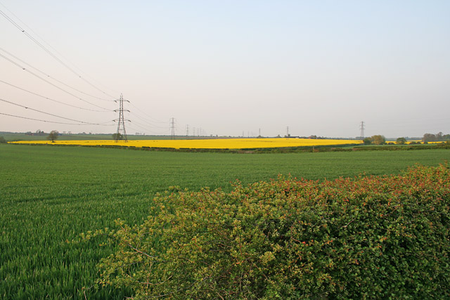 Farmland near Tithby