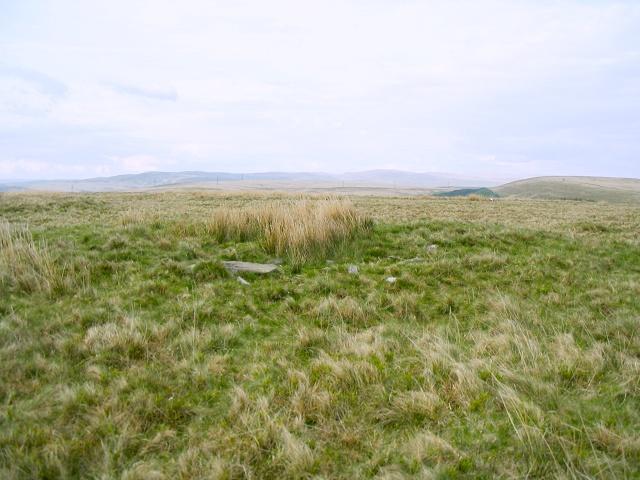 Pentwyn Mawr near Garnswllt