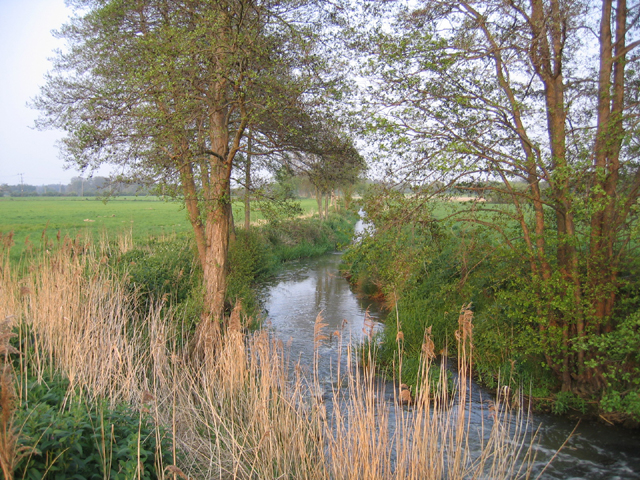 River Flit, Beadlow, Clophill, Beds