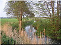 TL1038 : River Flit, Beadlow, Clophill, Beds by Rodney Burton