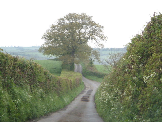 Lane to Ranscombe