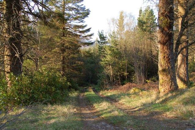 Glen Carron Track