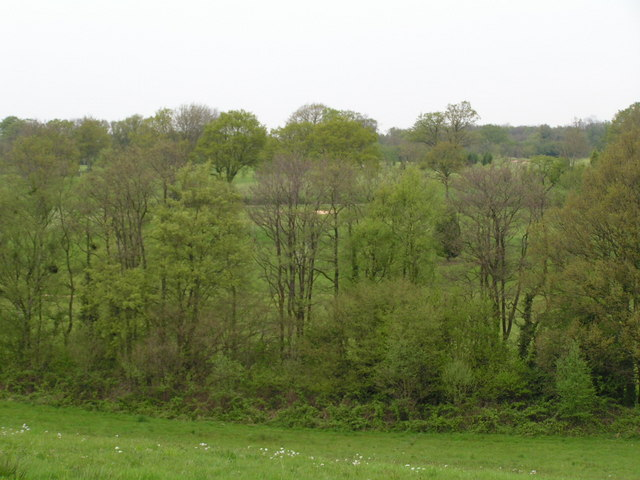 Sedlescombe Golf Course through the trees