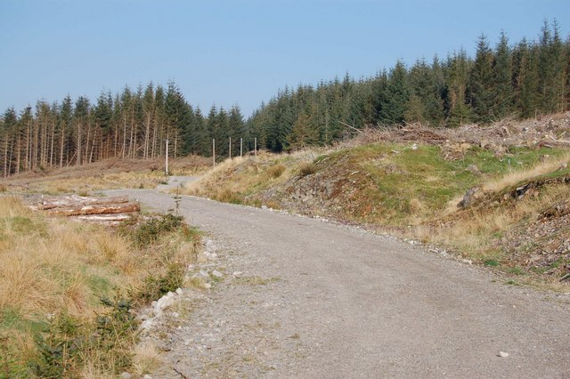 Knockban Forestry Road