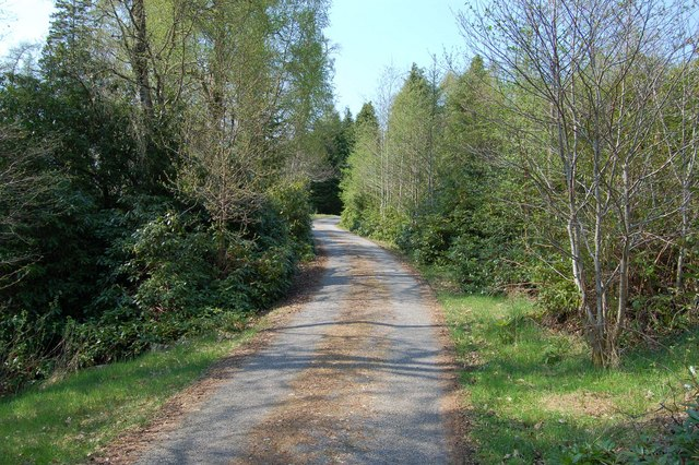 Corriemoillie Lodge Driveway