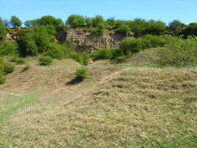 Pittington Quarry