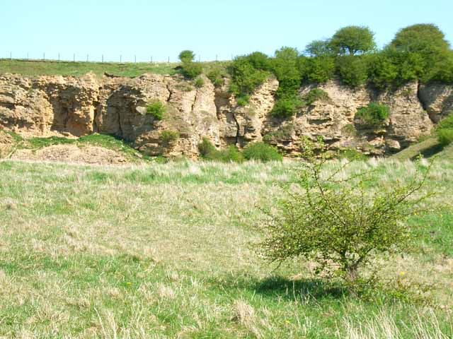 High Moorsley Quarry