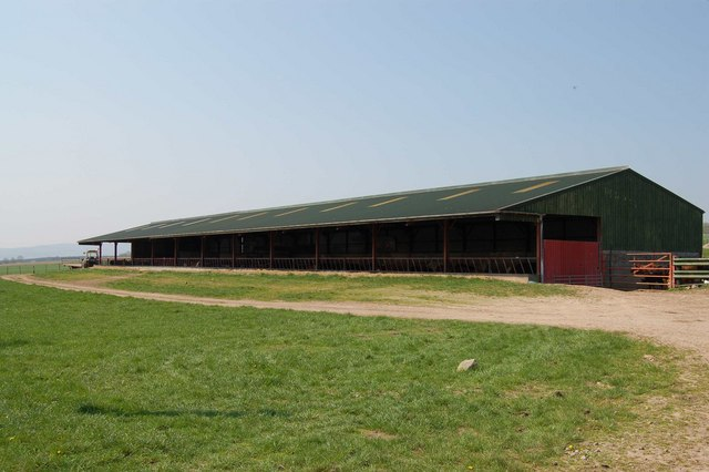 Cattle Shed at Woodend