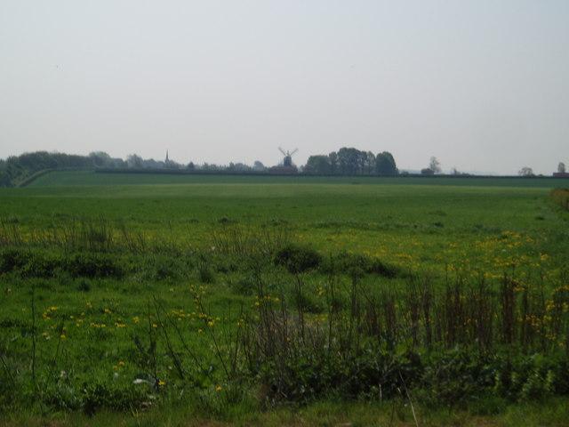 Across fields towards Tuxford Windmill, Nottinghamshire