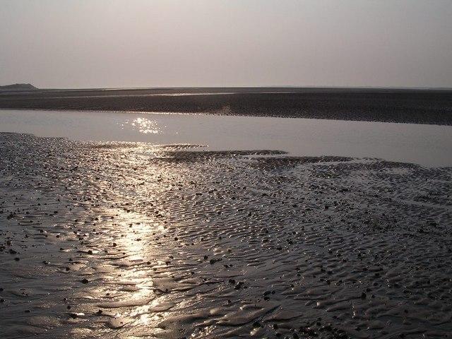 Sunlit Mudflats