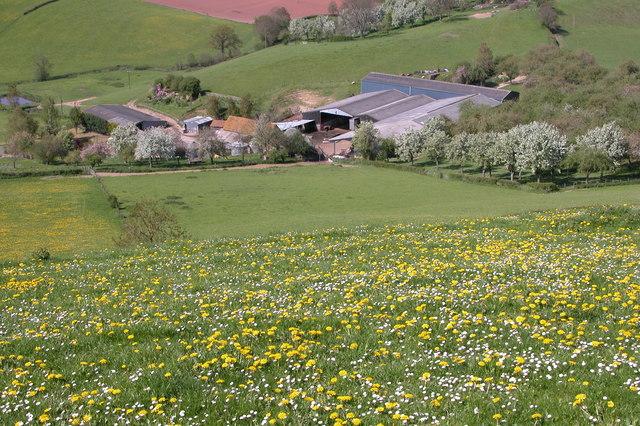 Farm at Foxhalls