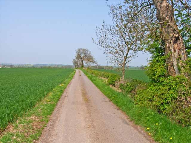 Farm road to West Newbiggin, near Sadberge
